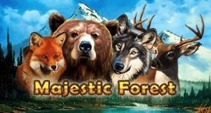 Majestic Forest