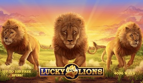Lucky Lions